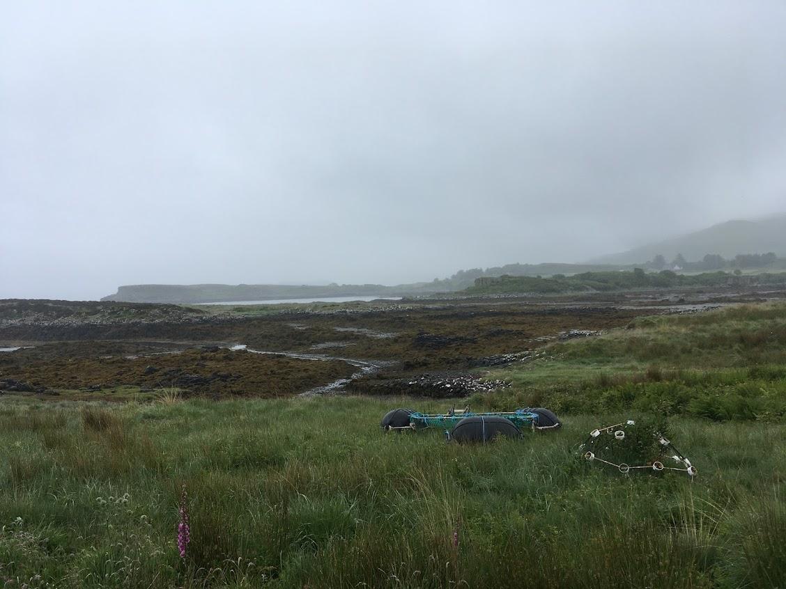 Community-owned seaweed farm in Mull
